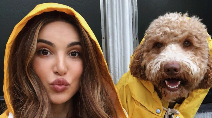 cute dog in raincoat