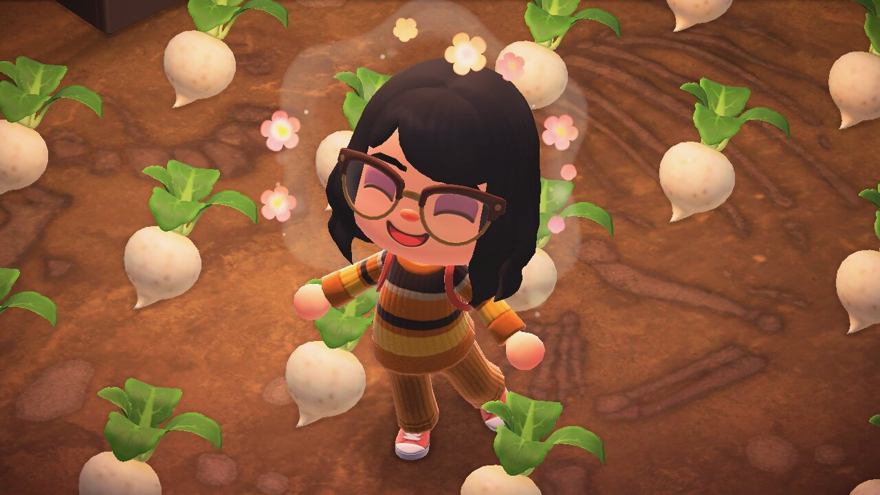 Animal Crossing: New Horizons - Turnips on diry patch