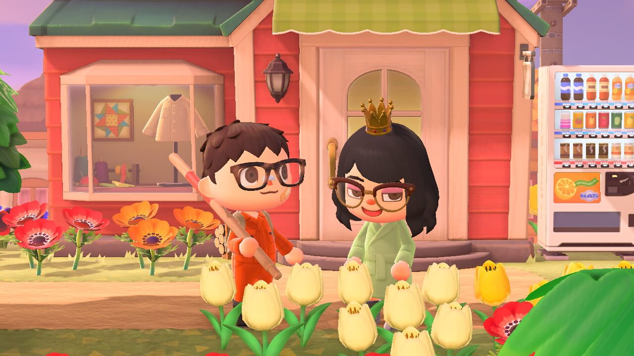 Animal Crossing: New Horizons - Visiting friend near Able Sister's