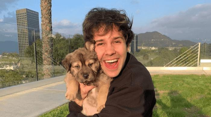 David Dobrik and puppy