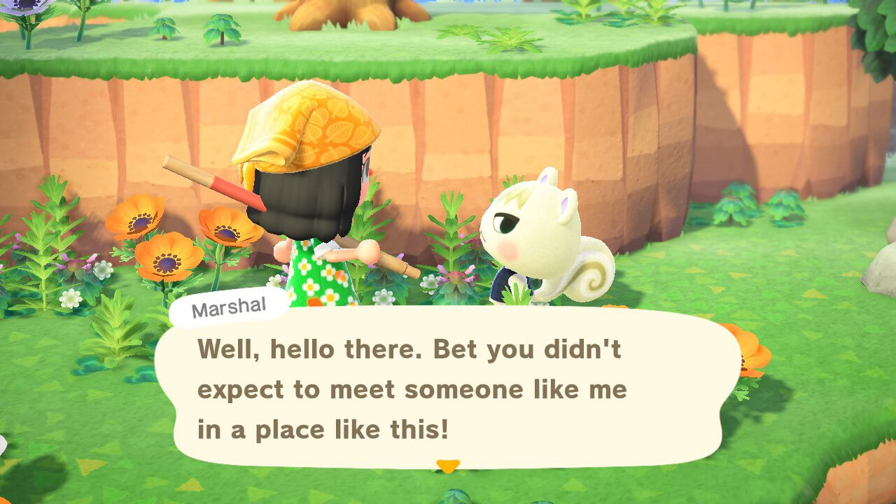 """Animal Crossing: New Horizons - Marshal - """"Well, hello there. Bet you didn't expect to meet someone like me in a place like this!"""""""