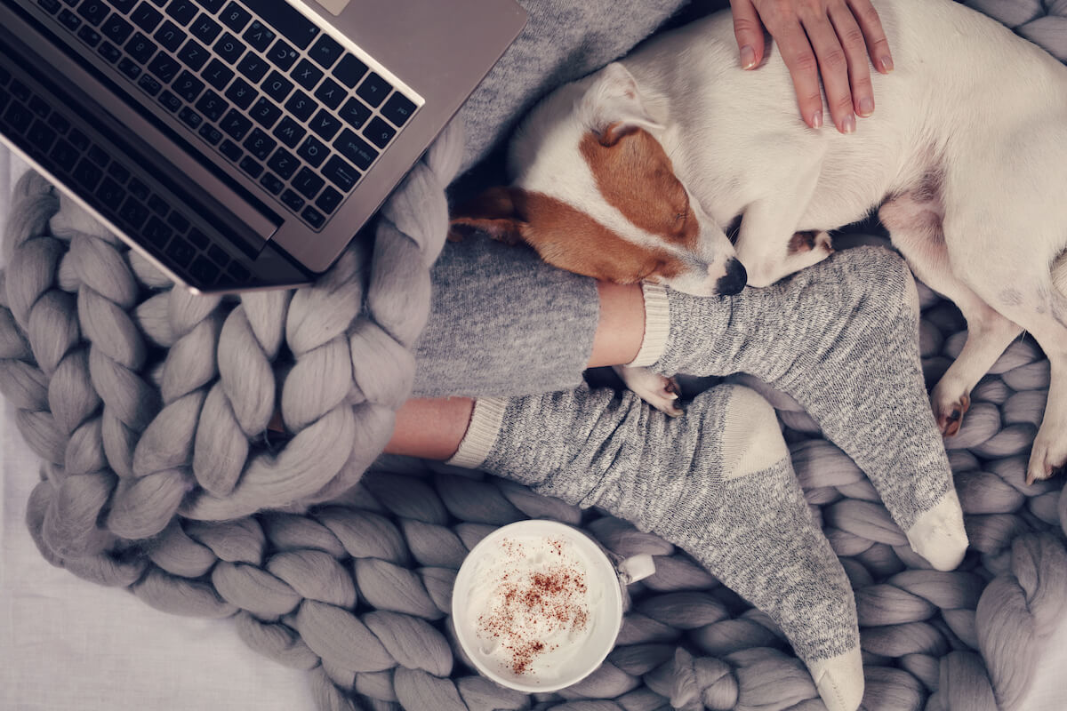 shutterstock-woman-with-big-comfy-blanket-coffee-petting-dog