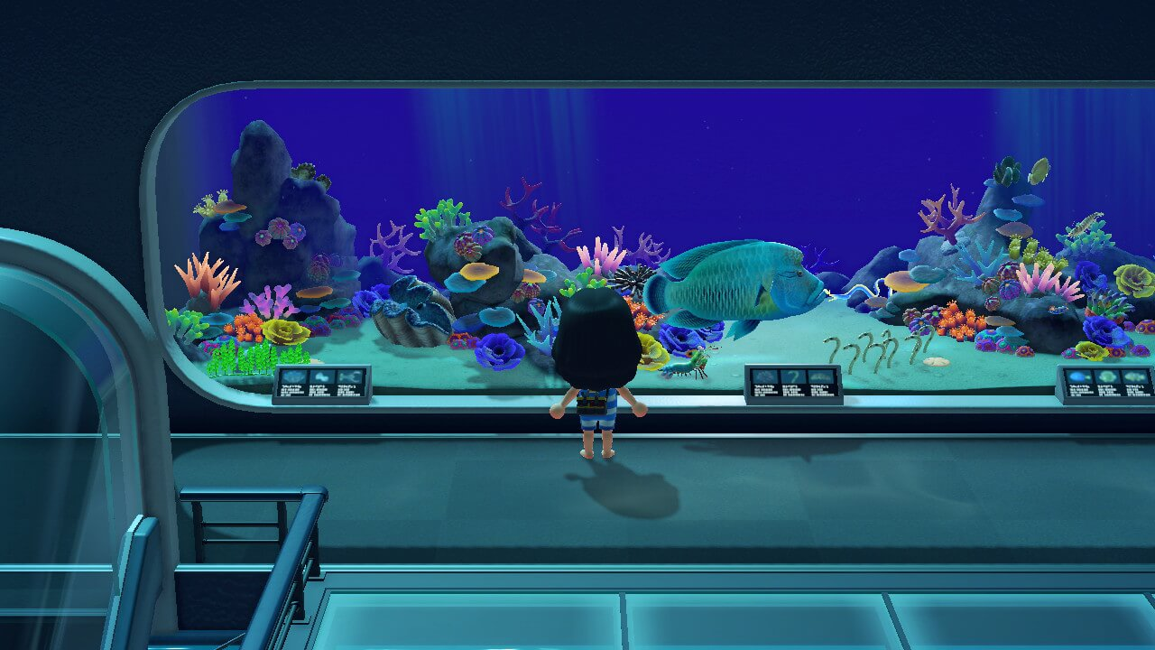 Animal Crossing: New Horizons - Gigas Clam in museum