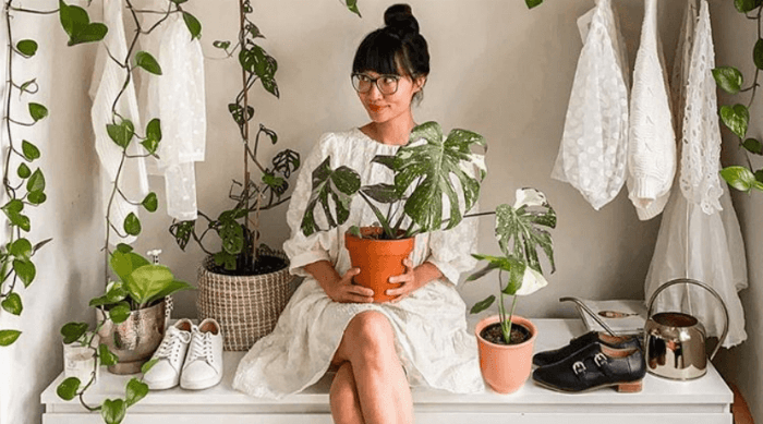 cute plants