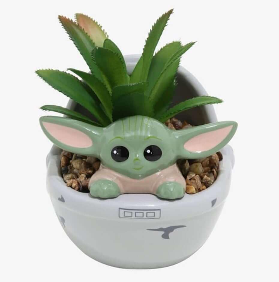 Box Lunch: The Child Faux Succulent Planter