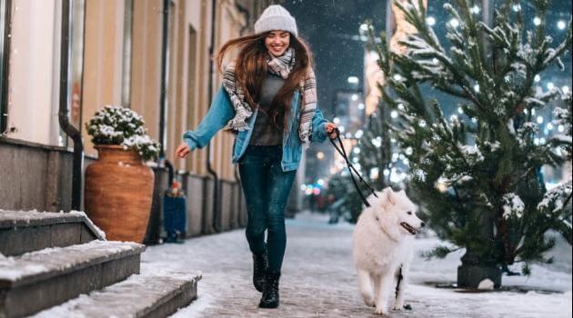 Shutterstock: woman walking dog in the snow