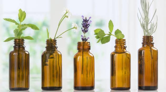 Shutterstock: bottles of essential oil with flowers and herbs