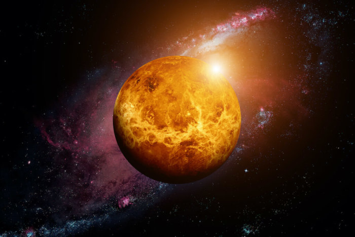 Shutterstock: Venus