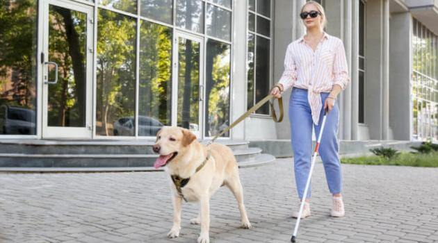 shutterstock-woman-and-guide-dog-011721-e1610918051392-articleH-011721