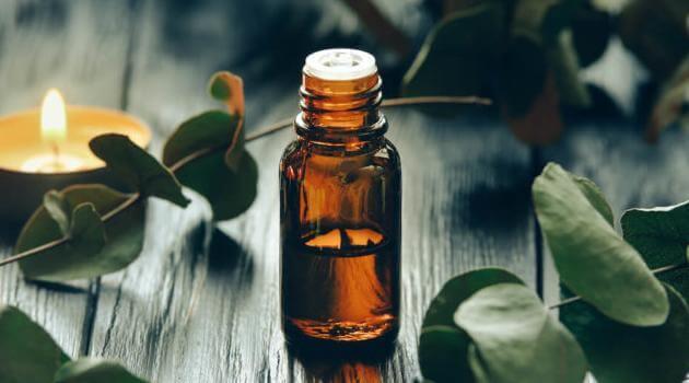 Shutterstock: eucalyptus essential oil