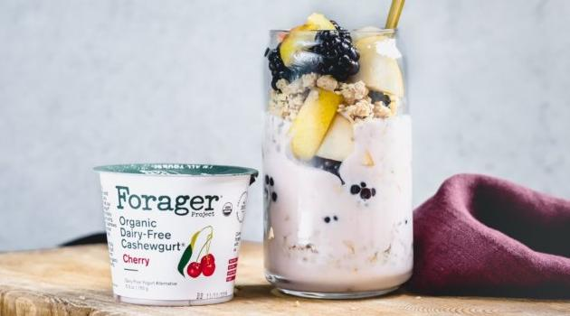 Forager Project: Organic Dairy-Free Cashewgurt