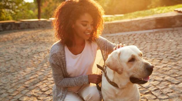 Shutterstock: woman and yellow lab in park