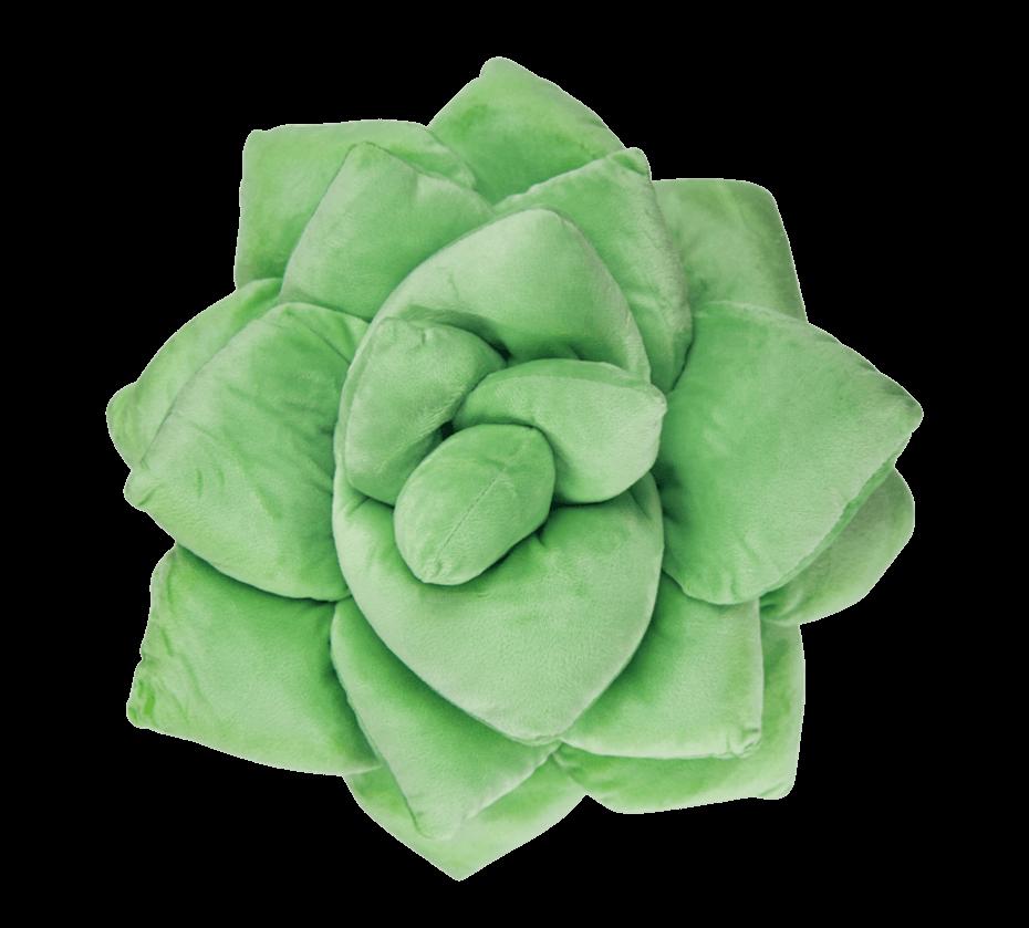 Green Philosophy Co Succulent pillows