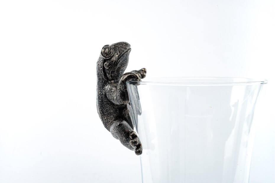Wayfair hanging jar frog